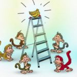 """""""Câu chuyện 5 con khỉ và 1 nải chuối"""" chủ doanh nghiệp nên đọc"""