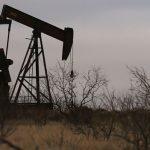 Dầu đảo chiều tăng nhẹ trước các dấu hiệu về nhu cầu năng lượng tại Mỹ