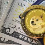 Lấy cảm hứng từ… một chú chó, đồng tiền số này đã tăng giá 800% và đạt vốn hoá hơn 2 tỷ USD
