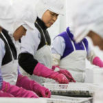 Khủng hoảng dân số Hàn Quốc: Người già đi làm, người trẻ thất nghiệp
