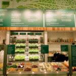 """Đế chế salad tỷ USD muốn """"định nghĩa lại"""" đồ ăn nhanh"""
